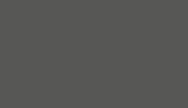 Ceska Televize